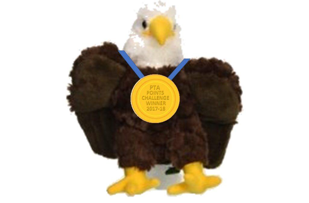 Our Eagle Needs A Name!